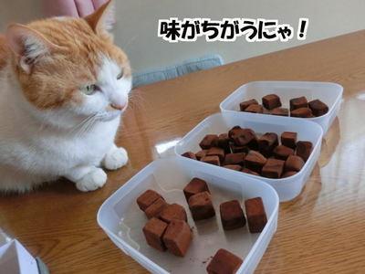 手作りチョコレート2