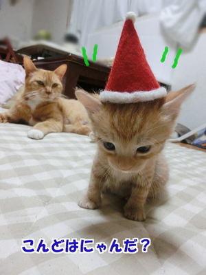 サンタ帽の試着1