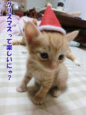 サンタ帽の試着2